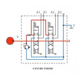 Distributeurs hydrauliques 60 L/mn - D.E - 2 L - 1/2 BSP - 315 B - avec Limiteur Pression