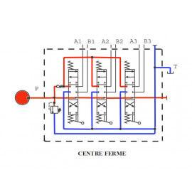 Distributeurs hydrauliques 60 L/mn - D.E - 3 L - 1/2 BSP - 315 B -avec Limiteur Pression