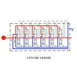 Distributeurs hydrauliques 60 L/mn - D.E - 6 L - 1/2 BSP - P 315 B avec  Limiteur Pression