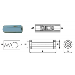 "Clapet Anti Retour hydraulique F.F - 1"" FBSP - 140 L/mn - 250 B - Taré à 0.5 B"