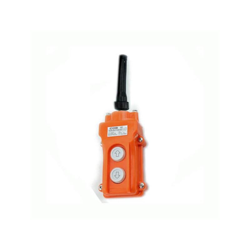 Boitier de Commande électrique 2 Boutons COB61 Télécommandes  38,30€