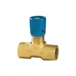 Regulateur de débit Bidirectionnel : 3/8 FBSP - 30 L/mn - 350 B