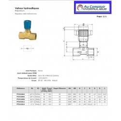 Regulateur de débit Bidirectionnel : 3/8 FBSP - 30 L/mn - 350 BFT251B06 Valves hydraulique 29,28€