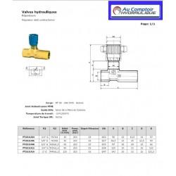 Regulateur de débit Unidirectionnel : 1/2 FBSP - 45 L/mn - 350 B FT251U08 Valves hydraulique 36,00€