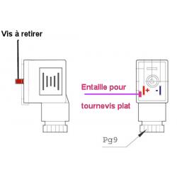 Connecteur étroit transparent a LED - 12/24 V