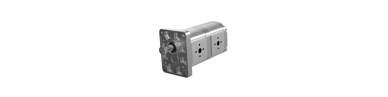 Pompe hydraulique multiple : pompe double et triple - Comptoir Hydraulique