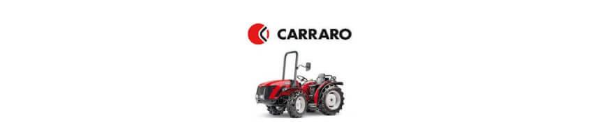 Pompe pour tracteur Carraro